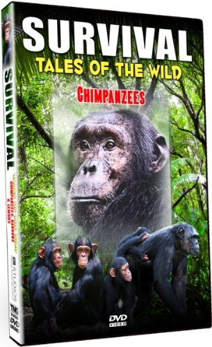 Chimpanzees Survival Tales Of The Wild Nr
