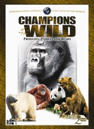 Primates Pandas & Bears Champions Of The Wild Nr 2 DVD