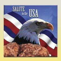 Salute To The Usa Salute To The Usa