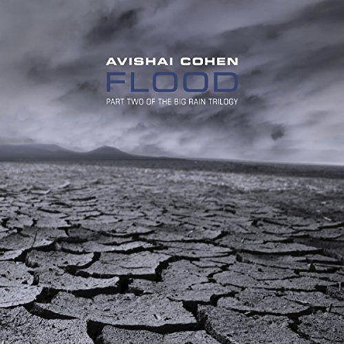 Avishai Cohen Flood