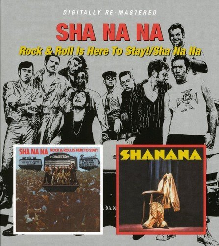Sha Na Na Rock & Roll Is Here To Stay! S Import Gbr 2 On 1