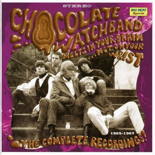 Chocolate Watch Band Melts In Your Brain Not On You Import Gbr 2 CD
