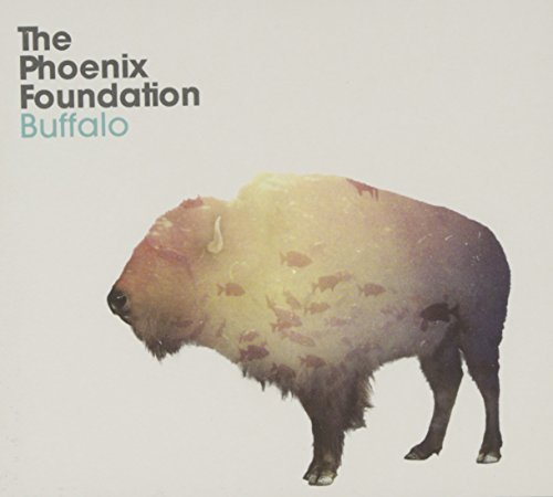 Phoenix Foundation Buffalo