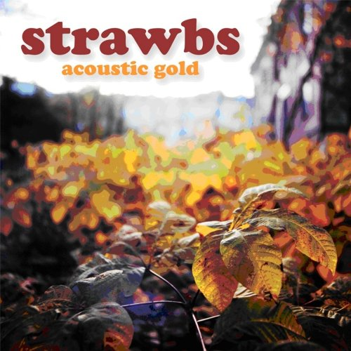 Strawbs Acoustic Gold