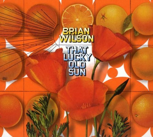 Brian Wilson That Lucky Old Sun Incl. DVD