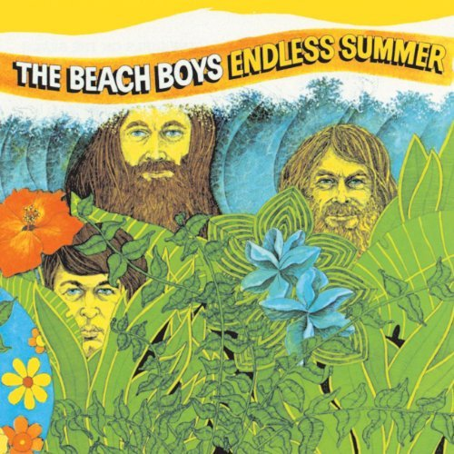 Beach Boys Endless Summer Lmtd Ed. 2 Lp