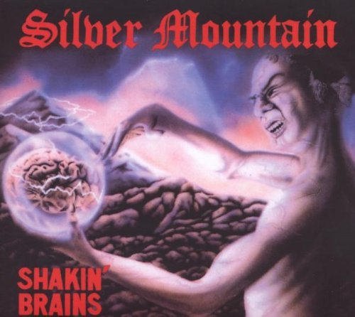 Silver Mountain Shakin' Brains