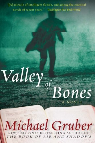 Michael Gruber Valley Of Bones