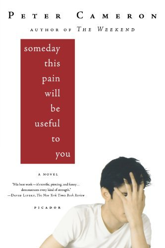 Peter Cameron Someday This Pain Will Be Useful To You Picador