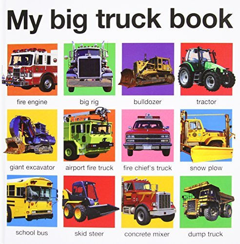 Roger Priddy My Big Truck Book (casebound)