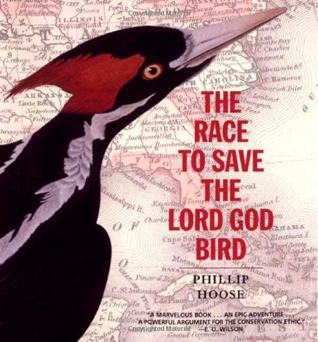Phillip M. Hoose Race To Save The Lord God Bird The