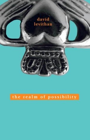 David Levithan Realm Of Possibility The