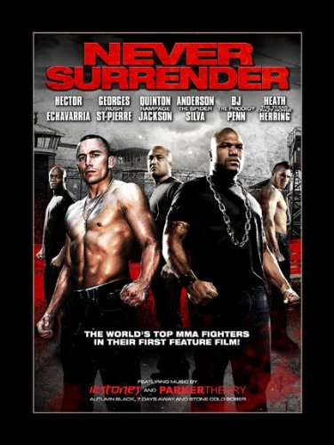 Never Surrender Never Surrender Ws R