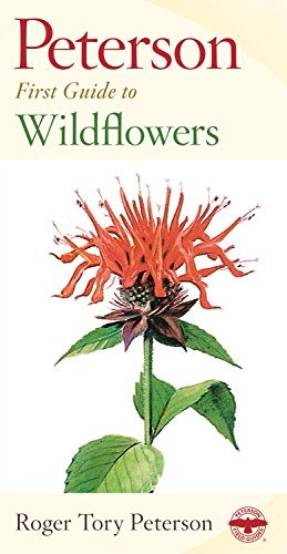 Roger Tory Peterson Peterson First Guide To Wildflowers Of Northeaster 0002 Edition;
