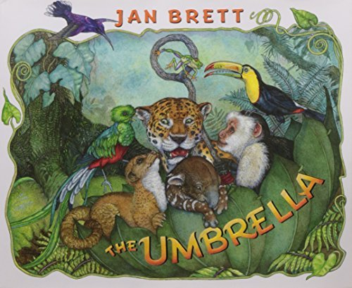 Jan Brett The Umbrella