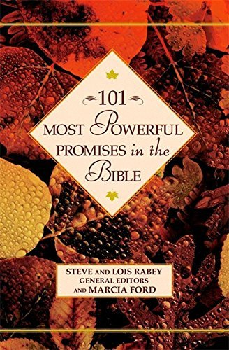 Steve Rabey 101 Most Powerful Promises In The Bible