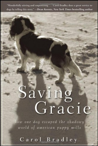 Bradley Carol Saving Gracie How One Dog Escaped The Shadowy World Of American