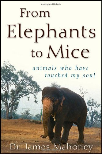 James Mahoney From Elephants To Mice Animals Who Have Touched My Soul