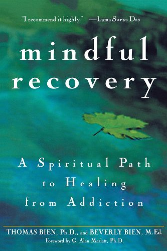 Thomas Bien Mindful Recovery A Spiritual Path To Healing From Addiction