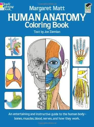 Margaret Matt Human Anatomy Coloring Book