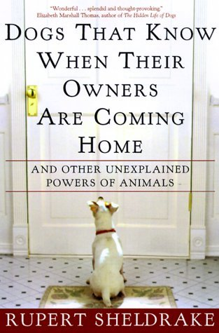 Rupert Sheldrake Dogs That Know When Their Owners Are Coming Home And Other Unexplained Powers Of Animals