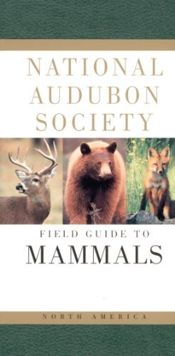 National Audubon Society National Audubon Society Field Guide To North Amer 0002 Edition;revised