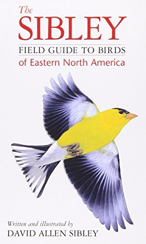 David Allen Sibley The Sibley Field Guide To Birds Of Eastern North A