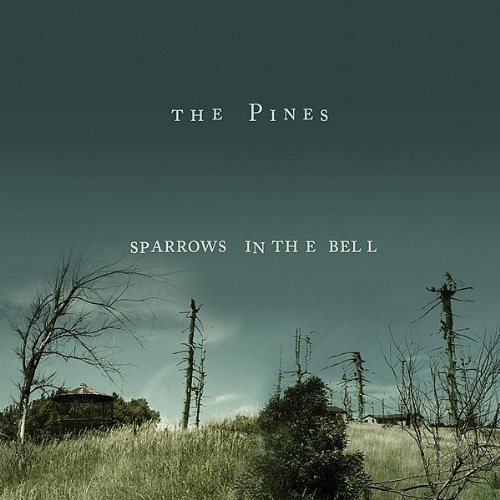 Pines Sparrows In The Bell