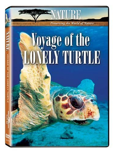 Nature Voyage Of The Lonely Turtle Nr