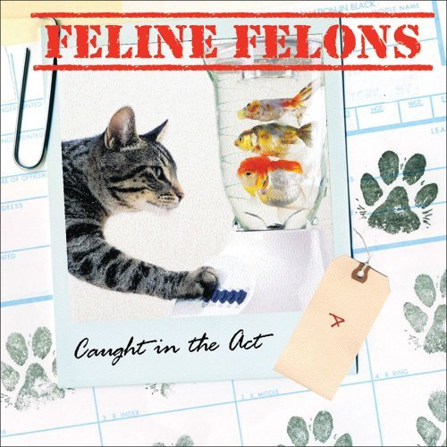 Debbie Keller Feline Felons Caught In The Act