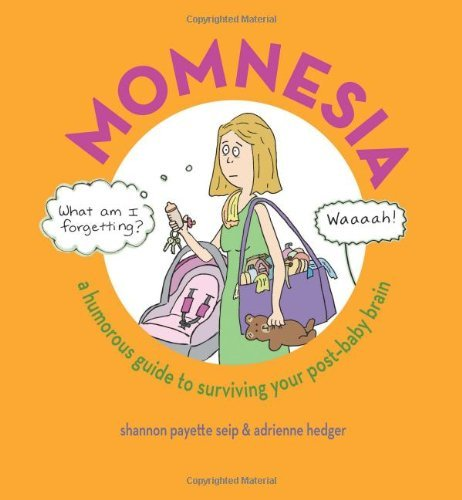 Shannon Payette Seip Momnesia A Humorous Guide To Surviving Your Post Baby Brai