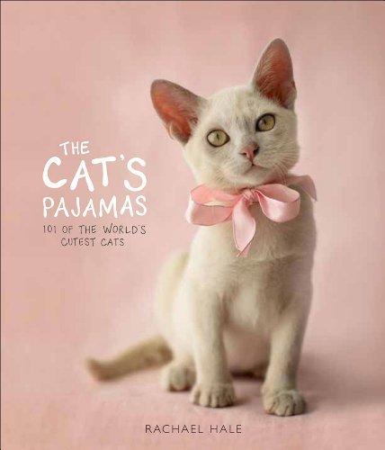 Rachael Hale The Cat's Pajamas 101 Of The World's Cutest Cats