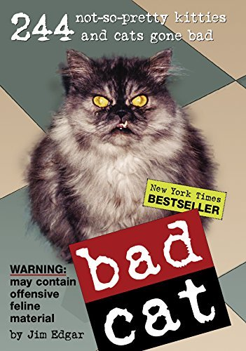 Jim Edgar Bad Cat