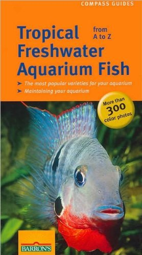 Ulrich Schliewen Tropical Freshwater Aquarium Fish From A To Z