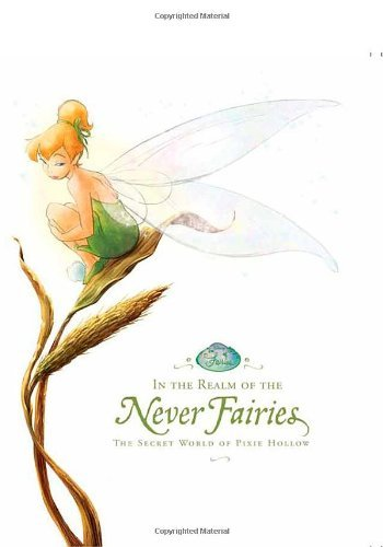 Disney Press In The Realm Of The Never Fairies The Secret World Of Pixie Hollow