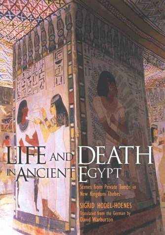 Sigrid Hodel Hoenes Life And Death In Ancient Egypt Energy Siting And The Management Of Environmental