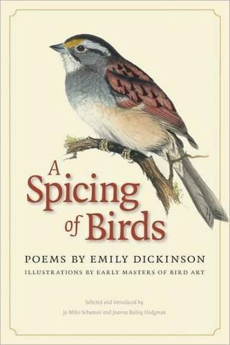Emily Dickinson A Spicing Of Birds Poems