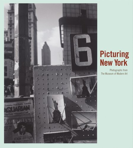 Sarah Hermanson Meister Picturing New York Photographs From The Museum Of Modern Art