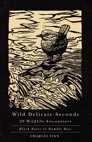 Charles Finn Wild Delicate Seconds 29 Wildlife Encounters