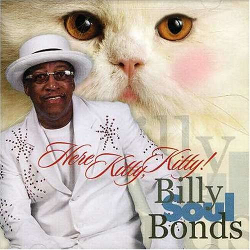 Billy Soul Bonds Here Kitty Kitty