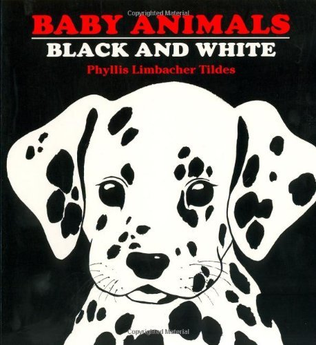 Phyllis Limbacher Tildes Baby Animals Black And White