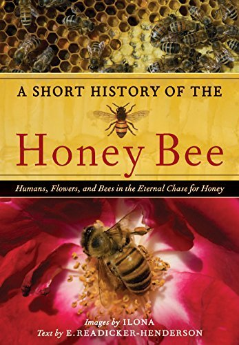 Ilona Mccarty A Short History Of The Honey Bee Humans Flowers And Bees In The Eternal Chase Fo