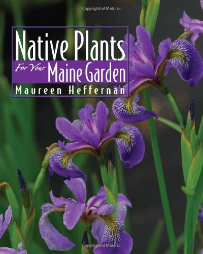 Maureen Heffernan Native Plants For Your Maine Garden