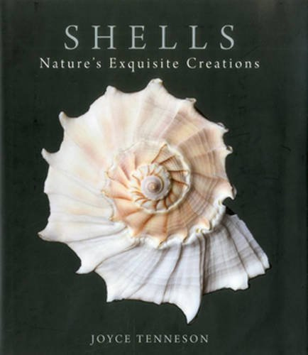 Joyce Tenneson Shells Nature's Exquisite Creations
