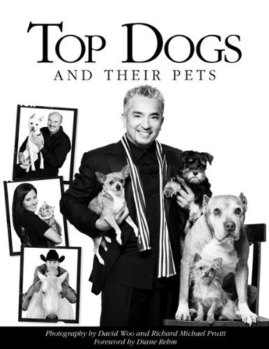 David Woo Top Dogs And Their Pets