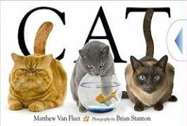 Matthew Van Fleet Cat