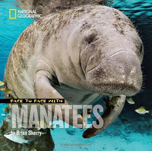 Brian Skerry Face To Face With Manatees