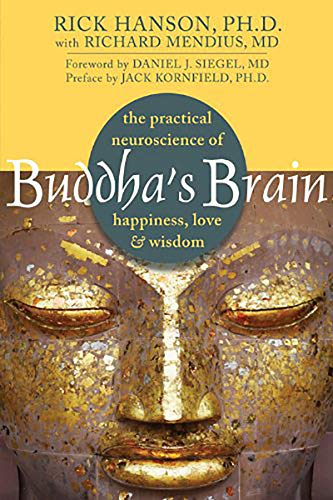 Rick Hanson Buddha's Brain The Practical Neuroscience Of Happiness Love An