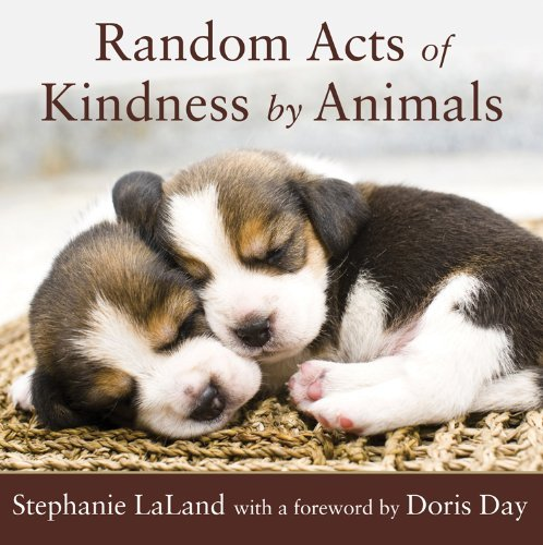Stephanie Laland Random Acts Of Kindness By Animals