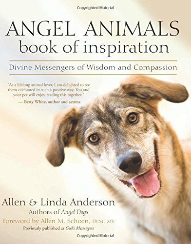 Allen Anderson Angel Animals Book Of Inspiration Divine Messengers Of Wisdom And Compassion